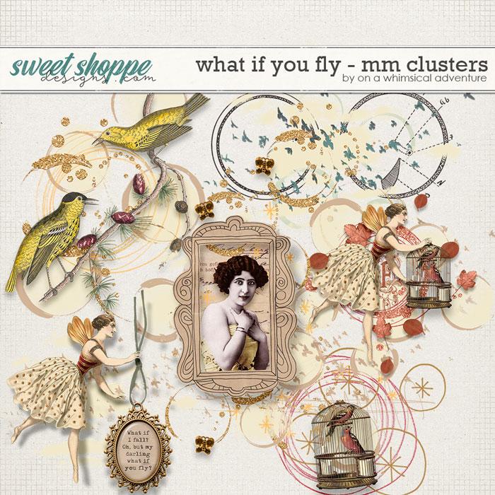 oawa-whatifyoufly-mmclusters