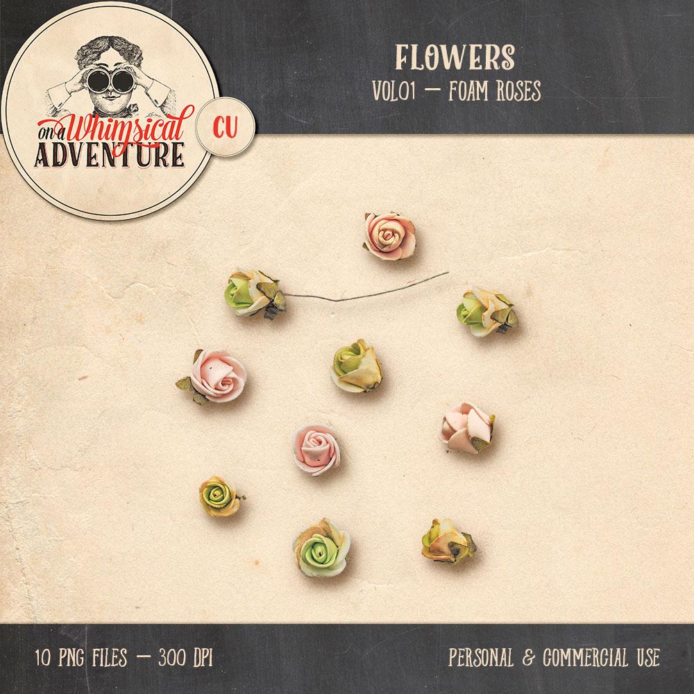 oawa-cu-flowersvol01-foamrosespv1