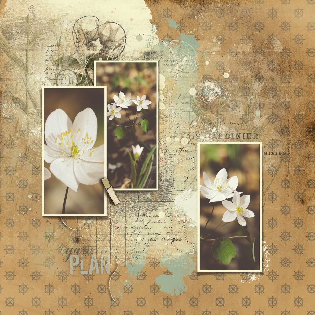 Whimsical Templates Vol03_AngeB 1