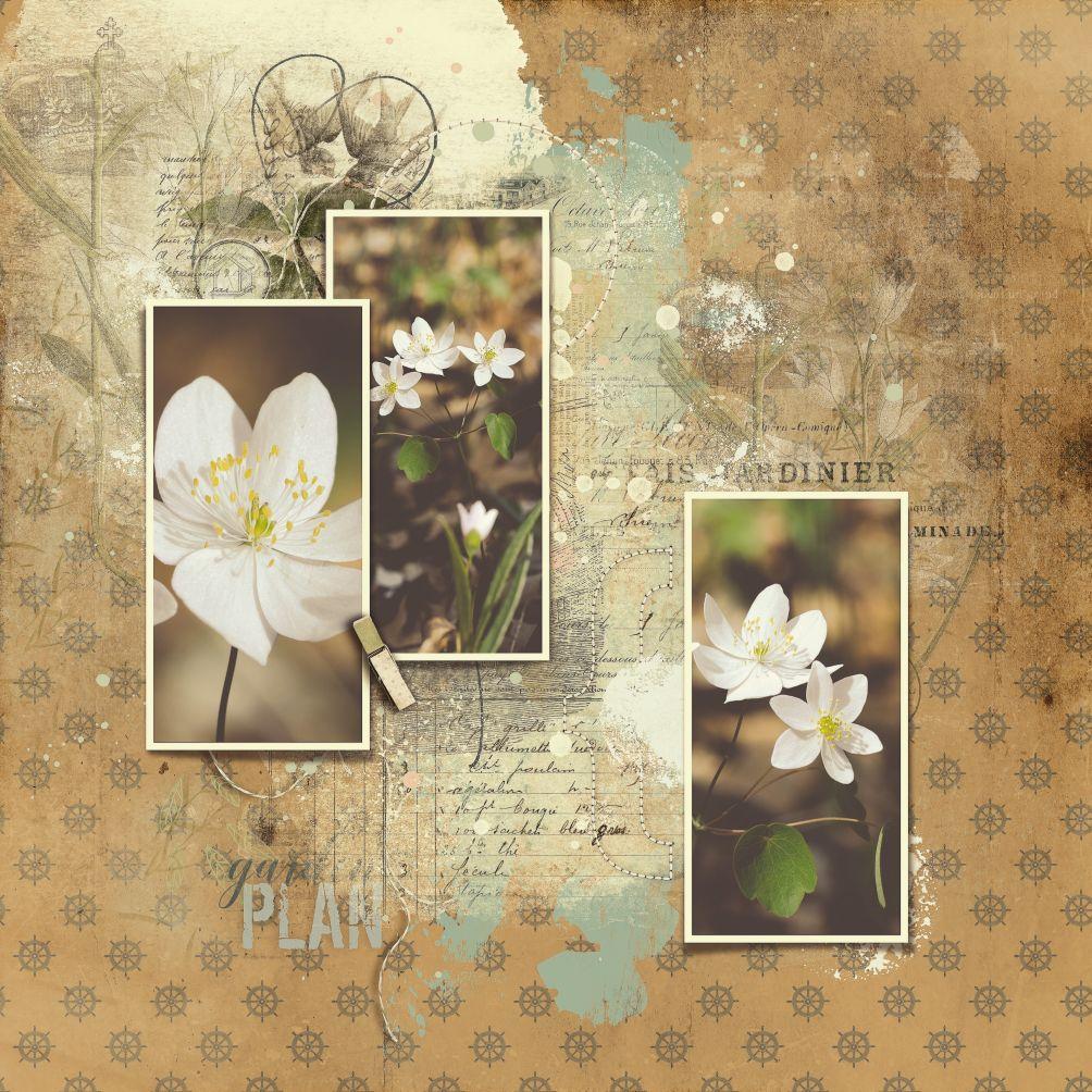 Whimsical Templates Vol03_AngeB 1