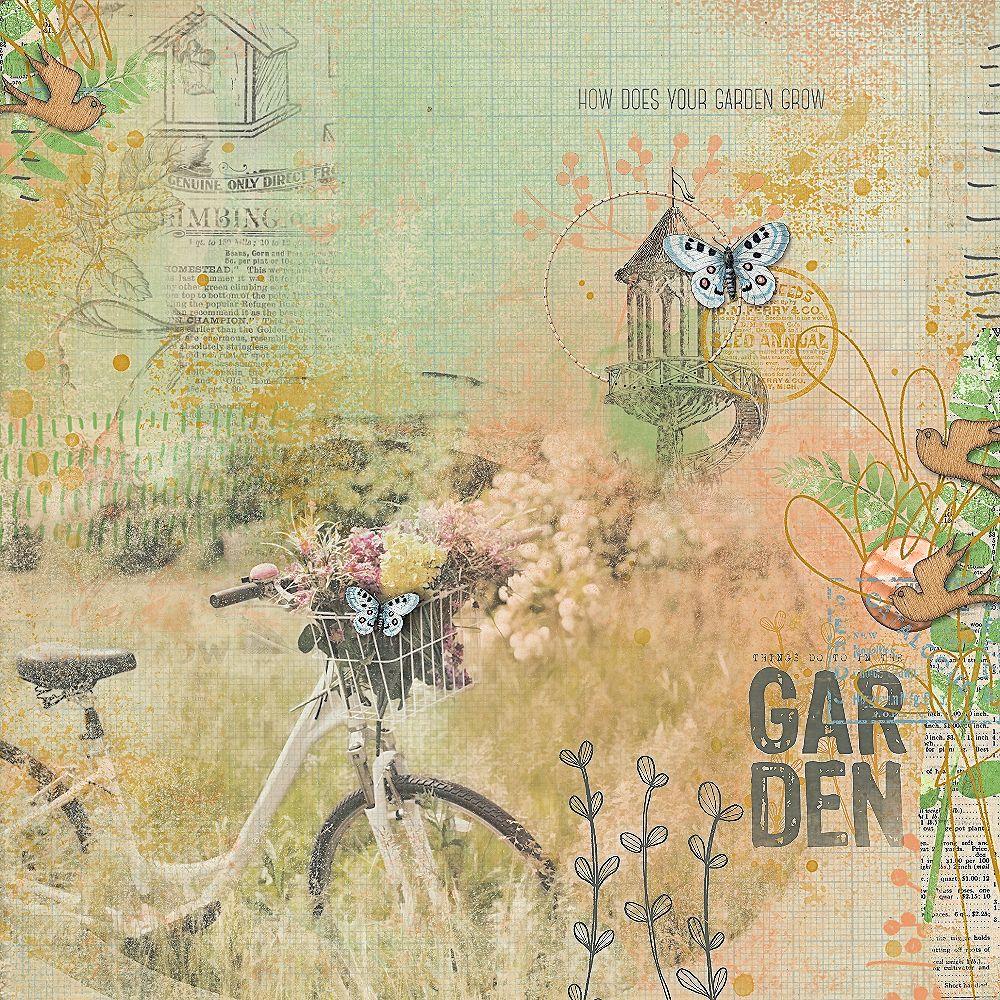 Garden1_AngeB