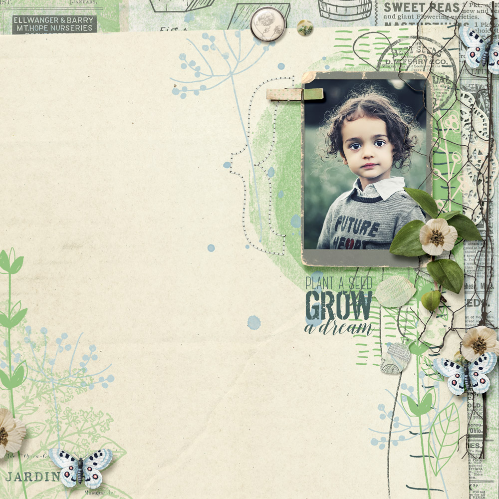 Grow-a-dream-1000