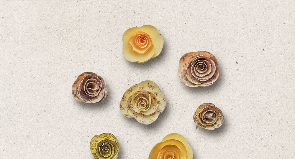 OAWA-CU-FlowersVol04-pv1
