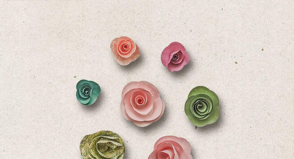 OAWA-CU-FlowersVol06-pv1